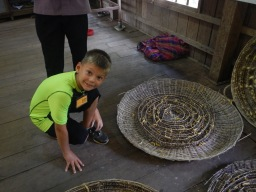 Field Trip to the Silk Farm