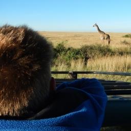 Hakuna Matata in the Maasai Mara